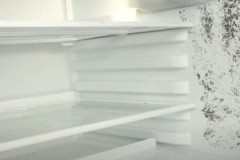 Как безопасно и эффективно убрать плесень в холодильнике в домашних условиях?