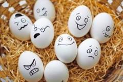 Важный параметр, или какая температура хранения яиц