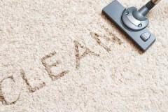 Способы и средства, как и чем почистить палас в домашних условиях быстро и эффективно