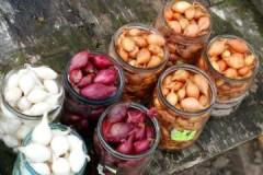 Проверенные методы, как сохранить лук севок до весны в домашних условиях