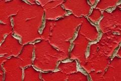 Лучшие способы, как снять масляную краску со стен