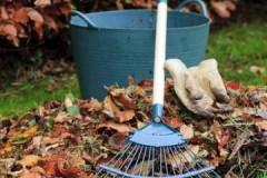 Все, что необходимо знать жильцам МКД об уборке придомовой территории