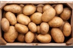 Обзор ящиков для хранения картошки в квартире