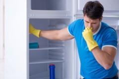 ТОП-10 народных средств, чтобы убрать запах из холодильника