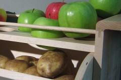 Научный подход: можно ли хранить яблоки в погребе вместе с картошкой