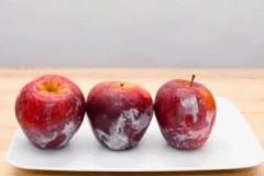 Зачем и чем обрабатывают яблоки для длительного хранения?